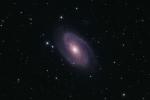 M81_21D