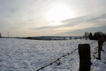 Winter10d