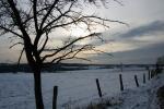 Winter10e